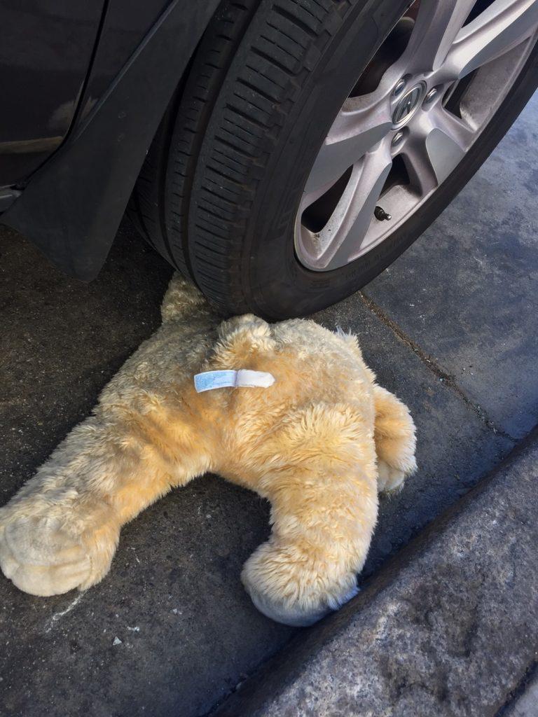 bearbody